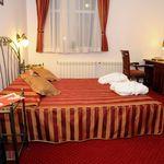 Business Standard pokój z 1 łóżkami (dla 1 os.)
