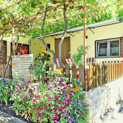 Holiday home with garden - Pula