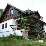 Casa Pinul Băcâia