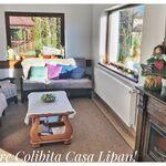 Casa Lipan Colibița