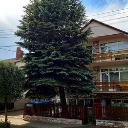 Rideg Apartment Héviz