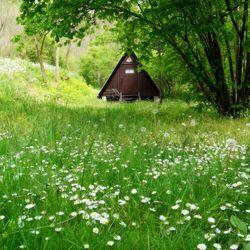 Családi kaland a siroki Vár-Camping-ben, 2 felnőtt és 2 gyerek részére, 4 ágyas faházban, félpanziós ellátással, kerékpárbérléssel, várbelépővel, fürdőbelépővel