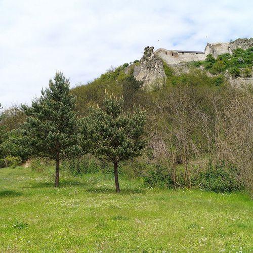 A vár látványa a kemping területéről.
