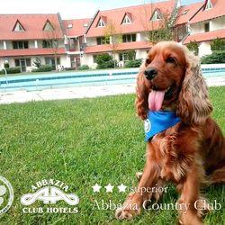 Őrségi Ötlet a Kikapcsolódásra, az Abbázia Country Club-ban