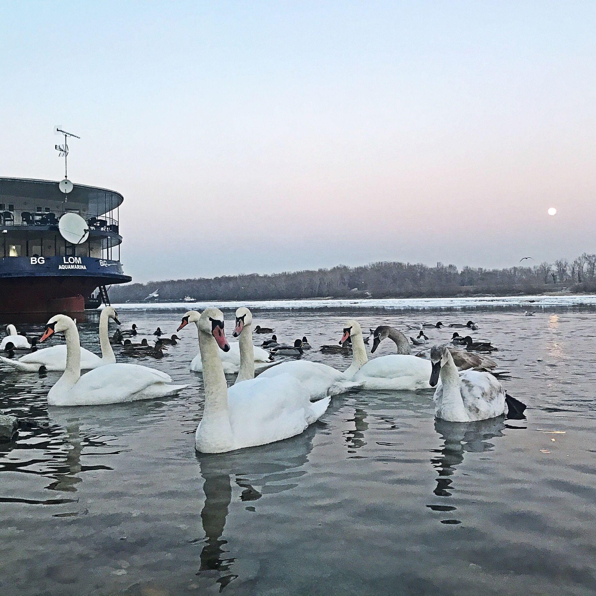Aquamarina Boathotel & Rendezvényhajó Budapest - Téli Környezet
