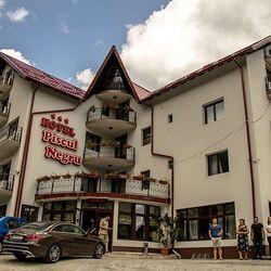 Hotel Piscul Negru Arefu ***