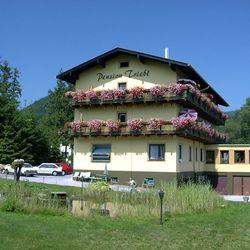 Pension Triebl Puchberg am Schneeberg