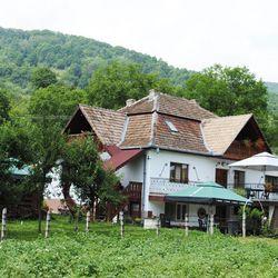 Casa Butnarului Geoagiu de Sus