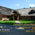 Bębnikąt Osada Leśna Puszcza Notecka 40 km Poznań