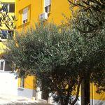 Kolovare City Beach Apartment Zadar