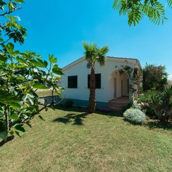 Holiday House Kozul Vir