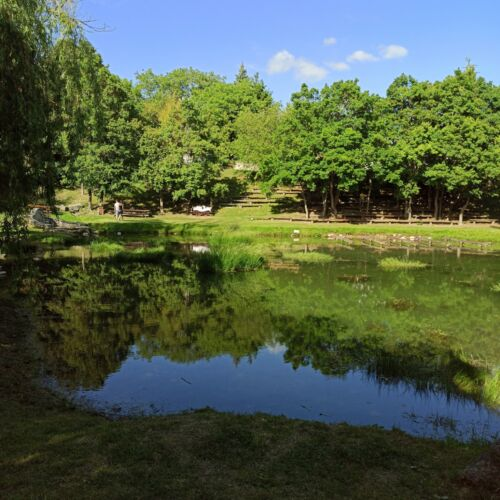Forrás tó | Vászoly