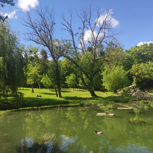 Forrás tó   Vászoly