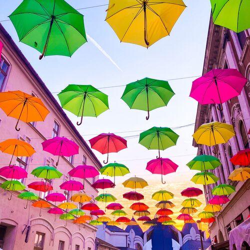 Színes esernyők | Makó