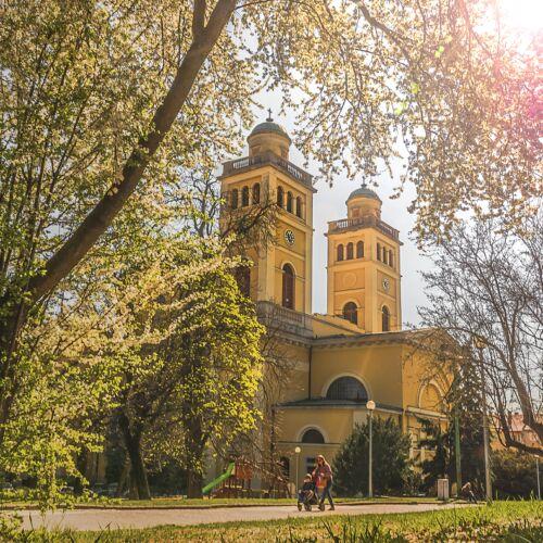 Egri Bazilika | Eger