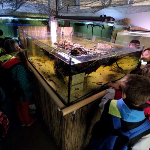 H2O Akváriumház