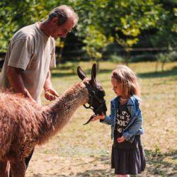Állatkert, Állatsimogató és Állatotthon Egyesület