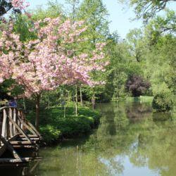 Sárvári Arborétum | Sárvár