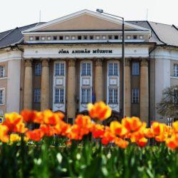 Jósa András Múzeum | Nyíregyháza