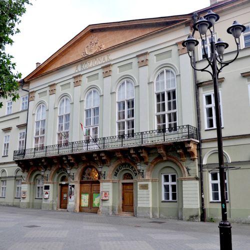 Rippl-Rónai Megyei Hatókörű Városi Múzeum