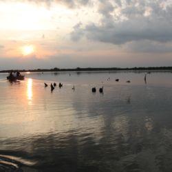 Madárrezervátumi Csónaktúrák | Tiszafüred