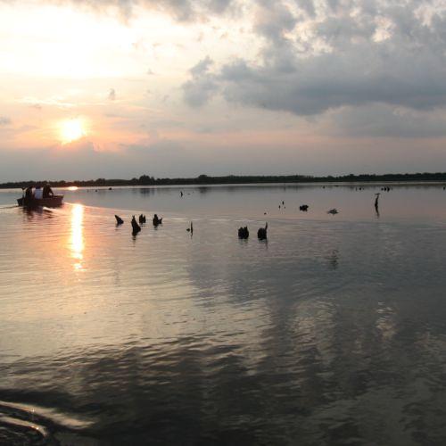 Madárrezervátumi Csónaktúrák a Városi Kikötővel | Tiszafüred