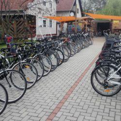 Gesztenye Biciklikölcsönző | Agárd