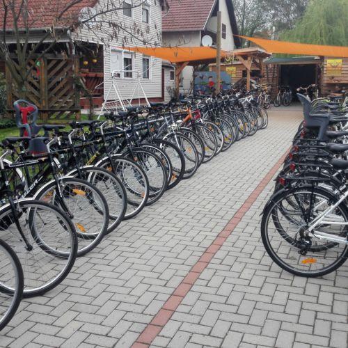 Gesztenye Biciklikölcsönző