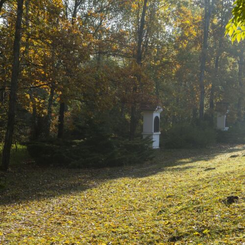 Kecskeméti Arborétum | Kecskemét