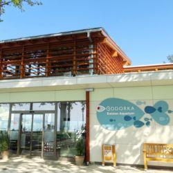 Bodorka Balatoni Vízivilág Látogatóközpont