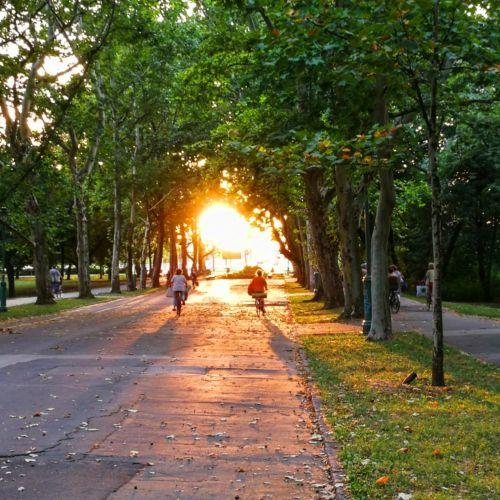 Erzsébet-liget | Szeged