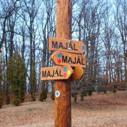 Majális Park | Miskolc