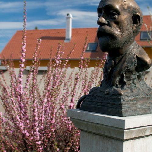 Barcsay Jenő szobor | Szentendre