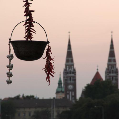 XXIV. Nemzetközi Tiszai Halfesztivál   Szeged