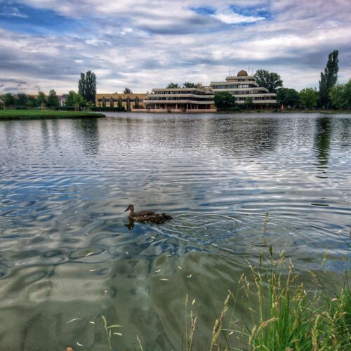 Csónakázó-tó | Székesfehérvár