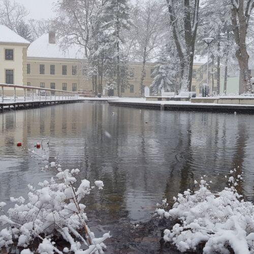 Vaszary Park | Kaposvár