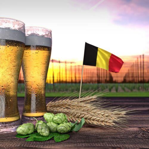 Belgian Beer Festival   Budapest