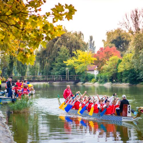 15. Székesfehérvári Nebuló Kupa és Sárkányhajó Fesztivál | Székesfehérvár