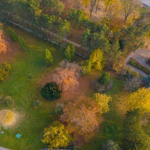Ezredévi Park | Szombathely