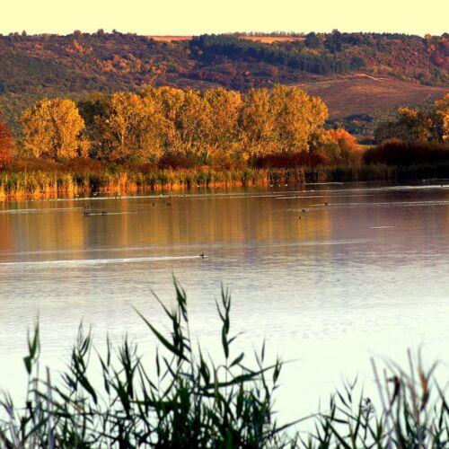 Pacsmagi-tavak Természetvédelmi Terület   Tamási