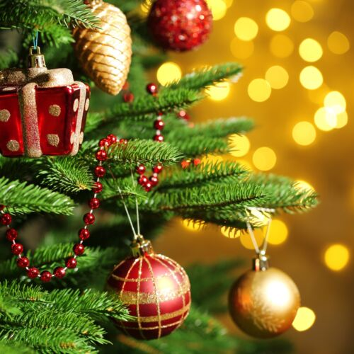 Karácsonyfa állítás a Balatonban | Szigliget