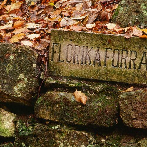 Flórika-forrás | Háromhuta