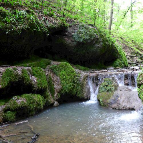 Csepegő-szikla | Óbánya