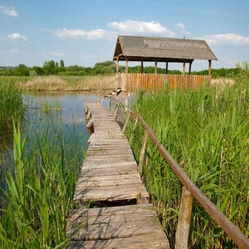 Merzse-mocsár Természetvédelmi Terület | Budapest
