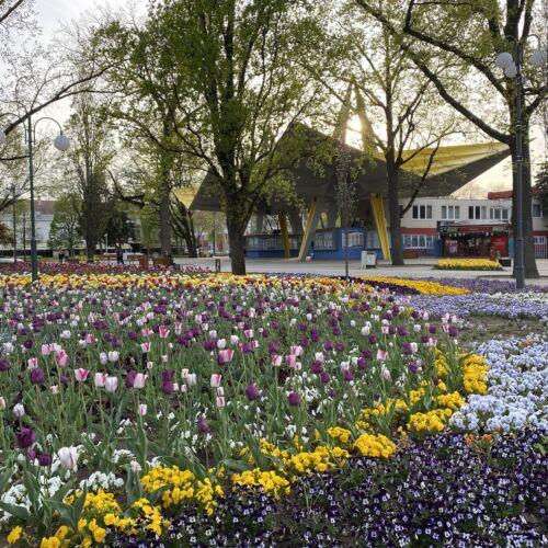 Szent István park | Hajdúszoboszló