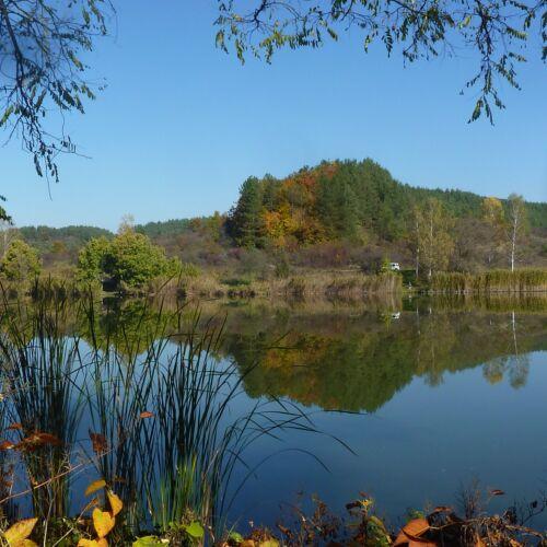 Búzásvölgyi tó | Recsk