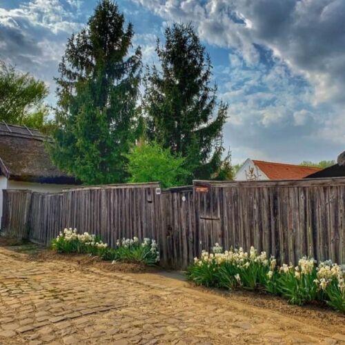 Csongrádi Belsőváros   Csongrád