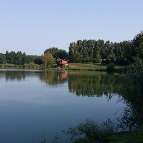 Fehérvári horgásztó   Somogysárd