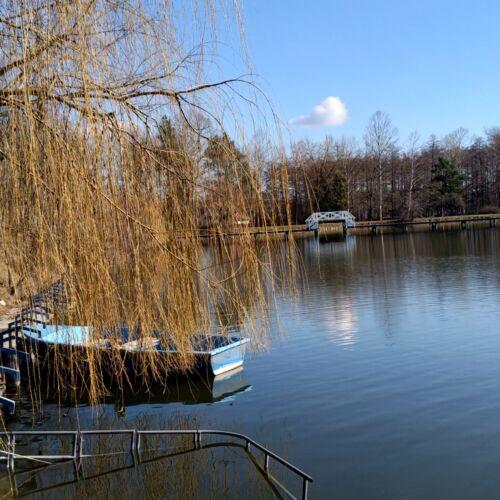 Tüskei tó | Dombóvár