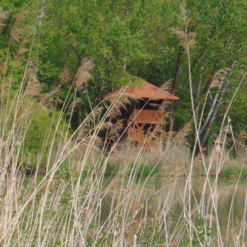 Himfai Parkerdő   Felsőmarác